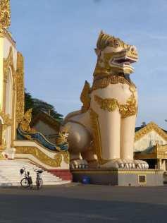 Biking to the Shwedagon pagoda
